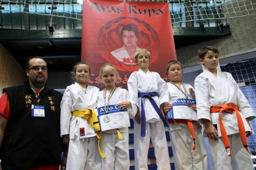 avaskupa_karate_131208ml_20.jpg